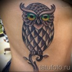 owl tattoo on the ribs - a photo with a tattoo on the example 03022016 2