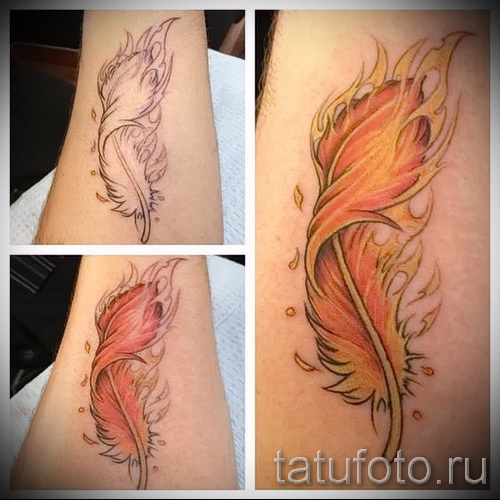 phoenix feather tattoo - a photo of the finished tattoo on 11022016 1