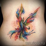 phoenix tatouage aquarelle - photo du tatouage fini 11022016 3