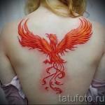 phoenix tatouage pour les filles - une photo du tatouage fini sur 11022016 1