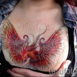 phoenix tatouage sur sa poitrine - une photo du tatouage fini 11022016 2