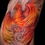 phoenix tatouage - une photo du tatouage fini sur 11022016 2
