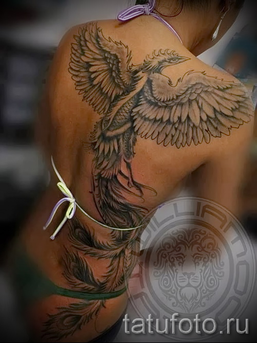 phoenix tattoo on his back - a photo of the finished tattoo 11022016 2