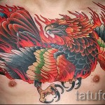 phoenix tattoo on his chest - a photo of the finished tattoo 11022016 1