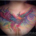 phoenix tattoo on his chest - a photo of the finished tattoo 11022016 3