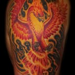 phoenix tattoo photos - photos of the finished tattoo 11022016 2