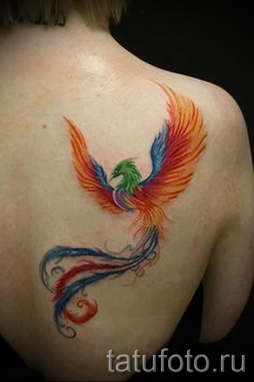 phoenix tattoo watercolor - photo of the finished tattoo 11022016 2