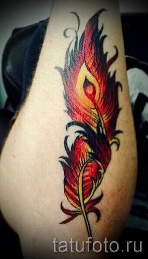 plume de phénix tatouage - une photo du tatouage fini sur 11022016 2