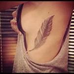 plume tatouage sur les côtes - une photo avec un tatouage sur l'exemple 03022016 1