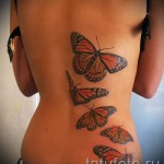 tatouage sur les bords du papillon - exemple Photo d'un tatouage sur 03022016 2