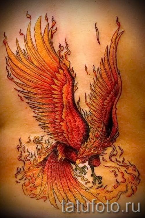 tattoo fire phoenix - a photo of the finished tattoo on 11022016 2
