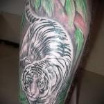 белый тигр тату - фото с вариантом готового рисунка от 29032016 2