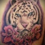 белый тигр тату - фото с вариантом готового рисунка от 29032016 3