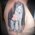 тату белый волк - фото с вариантом готового рисунка от 29032016 1