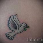 тату белый голубь - фото с вариантом готового рисунка от 29032016 4