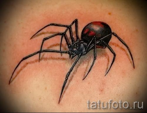 На ноге и их рисунок паук