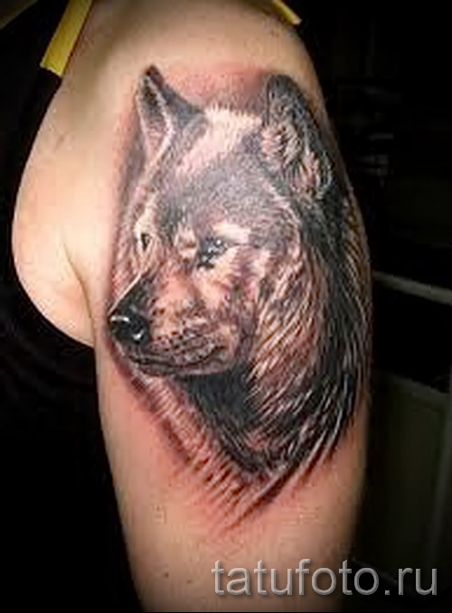 3д тату фото волк 1