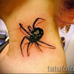 3d spider tattoo - Example photo of the finished tattoo on 02032016 2