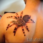 3d spider tattoo - Photo exemple du tatouage fini sur 02032016 3