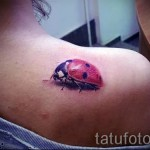 3d tattoo ladybug - Example photo of the finished tattoo on 02032016 1