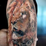 3d tattoo lion - an example of the finished tattoo photos by 02032016 1