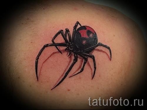 Spinne 3d tattoo - Beispielfoto des fertigen Tätowierung auf 02032016 3