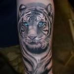 blanc tatouage de tigre - une photo avec un mode de réalisation du motif fini de 29032016 1