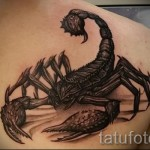 scorpion tattoo 3d pictures - Example photo of the finished tattoo on 02032016 1