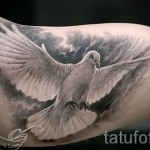 tattoo white dove 1