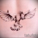 tattoo white dove 2