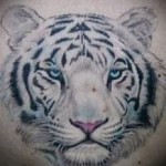 white tiger tattoo - a photo with an embodiment of the finished pattern of 29032016 1