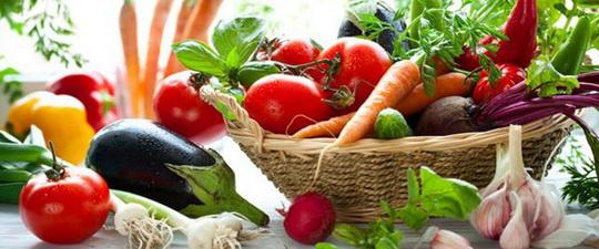 Вегетарианская диета - можно ли отказаться от мяса в питании животных - Здоровые животные без лекарств - фото