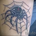 тату паутина с пауком - рисунок с большим пауком на теле