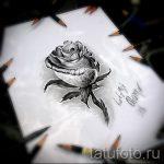 тату розы эскизы карандашом 2