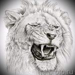 тату эскизы лев на икре - рисунки для татуировки от 29042916 2