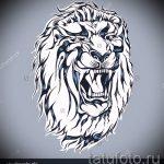 тату эскизы оскал льва на плече - рисунки для татуировки от 29042916 2