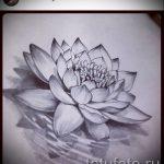цветок лотоса тату эскизы - рисунки от 26-04-2016 11
