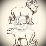 эскизы тату лев и львица - рисунки для татуировки от 29042916 2