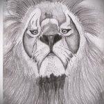 эскизы тату лев реализм - рисунки для татуировки от 29042916 3