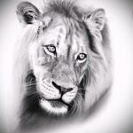 эскизы тату лев реализм - рисунки для татуировки от 29042916 6