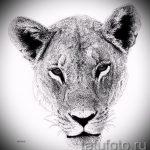 эскизы тату лев реализм - рисунки для татуировки от 29042916 7