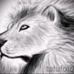 эскизы тату лев реализм - рисунки для татуировки от 29042916 8
