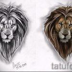 эскизы тату льва для мужчин - рисунки для татуировки от 29042916 3