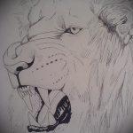 эскизы тату льва на ноге - рисунки для татуировки от 29042916 10