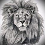 эскизы тату льва на руке - рисунки для татуировки от 29042916 3