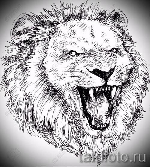 167Не цветные тату лев на руку