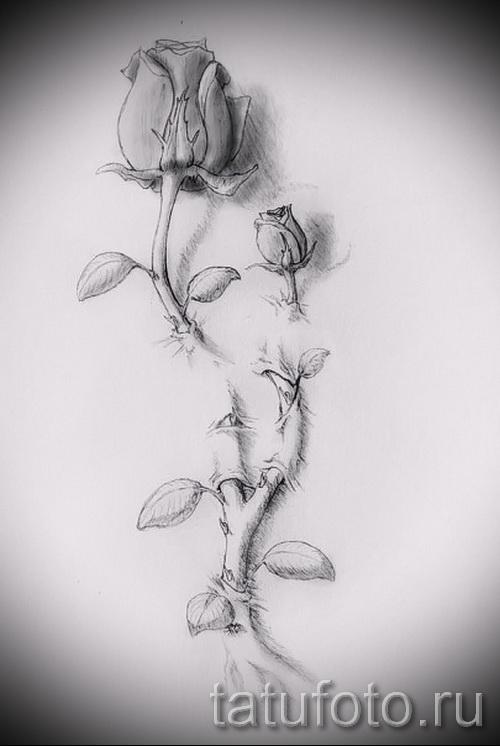 Эскизы тату розы для девушек