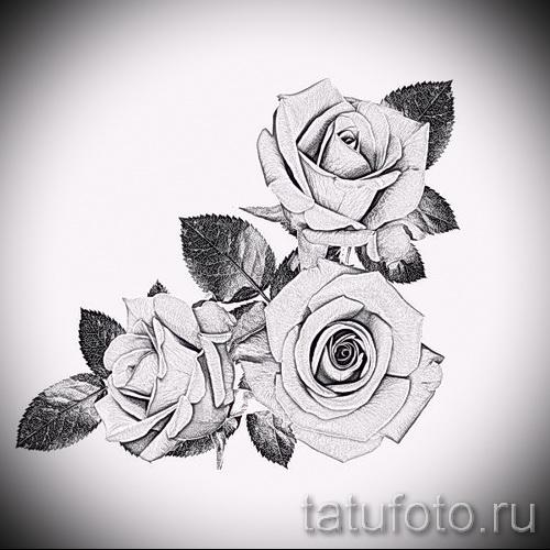 Коллекция картинок Чернобелая графика Розы