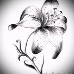 эскизы тату цветов черно белые - рисунки от 26-04-2016 4