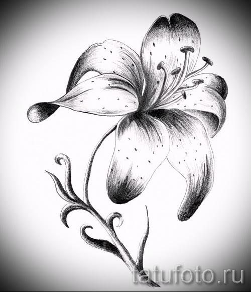 Черно белые цветы тату эскизы